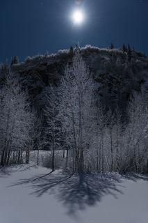 Spotlight Moon print