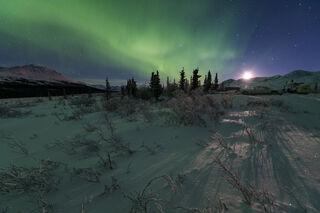 Aurora and Moonlight print