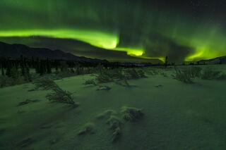 Aurora Over Snowy Pass print