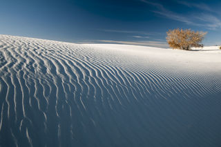 New Mexico, White Sands, White Sands National Monument, desert, landscape, national monument, sand dunes, scenic, winter