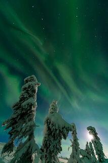 Moon, Snow, Aurora