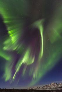 Alaska, Denali National Park & Preserve, Spring, aurora borealis, landscape, night sky, nighttime, northern lights