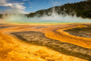 Montana, Yellowstone National Park, landscape, summer, wildlife