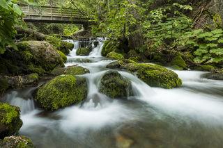Creek and Bridge print