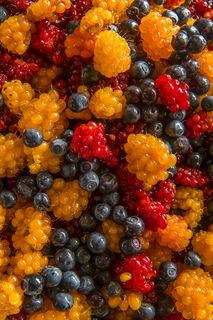 Berry Blend No. 2 print