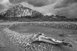 Autumn, Dalton Highway, excursion, landscape, workshop