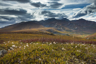 Alaska, Arctic, Autumn, Brooks Range, Chandalar Shelf, landscape