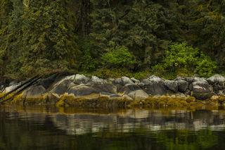 Coastal Reflections print