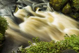 Anan Creek print