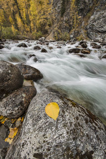 Alaska, Autumn, Hatcher Pass State Recreation Area, landscape