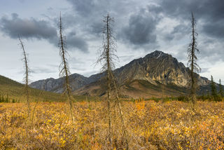 Alaska, Autumn, Brooks Range, Dalton Highway, Mt. Dillon, landscape