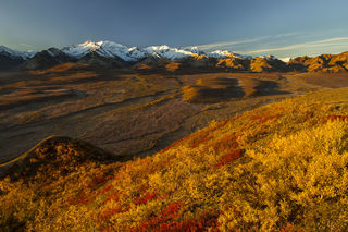 Autumn, Denali National Park, Polychrome Pass, fall colors, landscape, morning