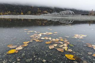 Autumn, Knik River, bridge, cloudy, gold, leaves, morning, railroad, river