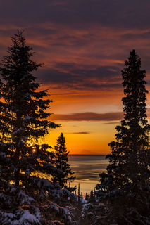 Cook Inlet, Mt. Redoubt, Sitka spruce, sunset, winter
