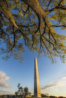 Autumn, District of Columbia, Washington, fall, monuments