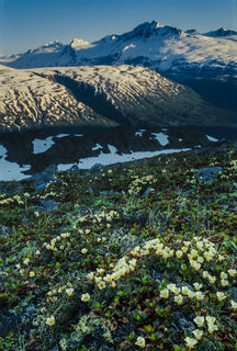 Thompson Pass Summer print