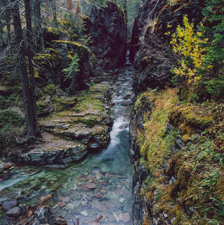 Autumn, GLacier National Park, Montana, Sun Rift Gorge, creek, film, forest, landscape, stream