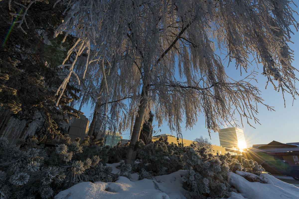 Alaska, Anchorage, afternoon, city, clear skies, downtown, frost, winter, photo