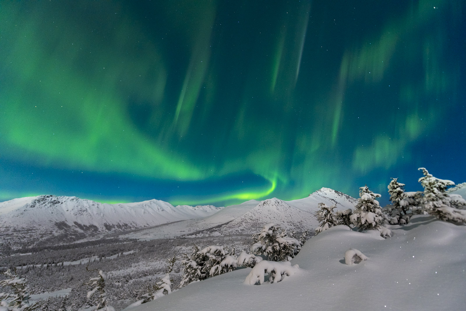 The aurora borealis dances over the front range of the Chugach Mountains on a bright moonlit night.