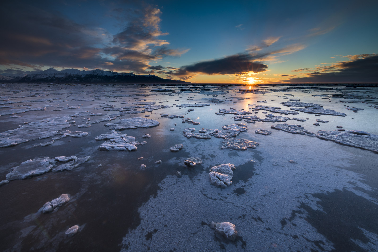 Despite extreme tides that cover this coastal landscape with salt water twice a day, the mudflats of the Anchorage Coastal Wildlfe...