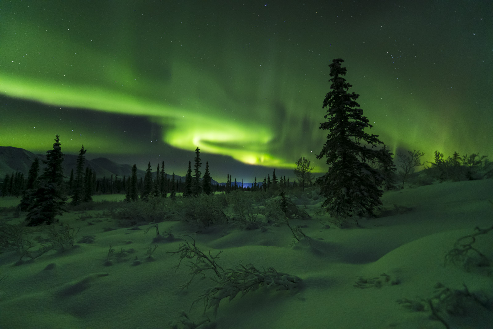 Once in a while, when there is a good aurora forecast but the  likelihood of clouds near Anchorage, I will hit the road early...