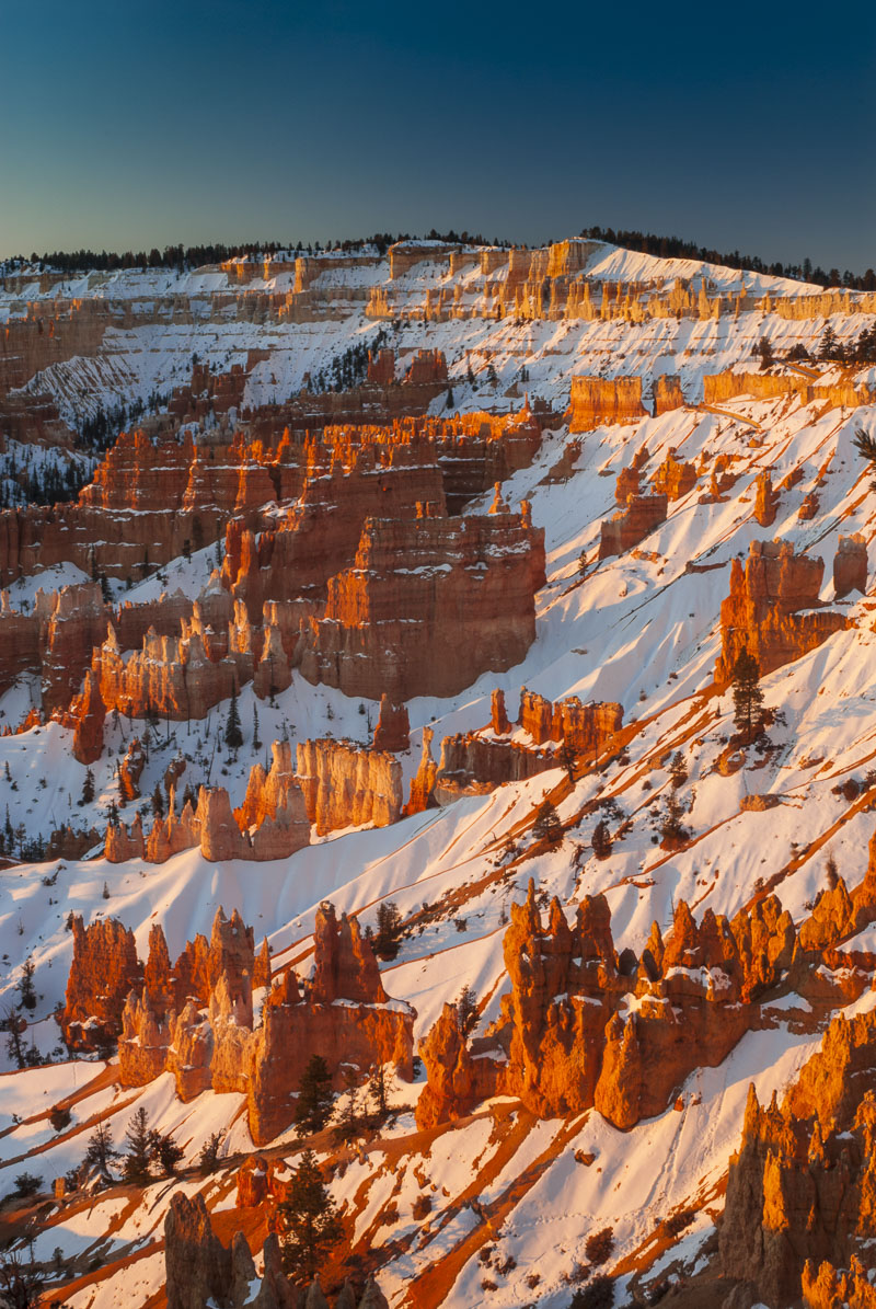 Morning light and snow on canyon walls, Bryce Canyon National Park, Utah. Winter is my favorite time to photograph in the park...