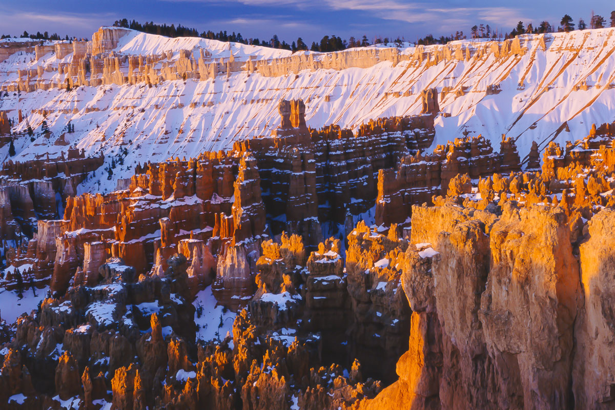 Morning light on hoodoos and other formations at Sunset Point, Bryce Canyon National Park, Utah.