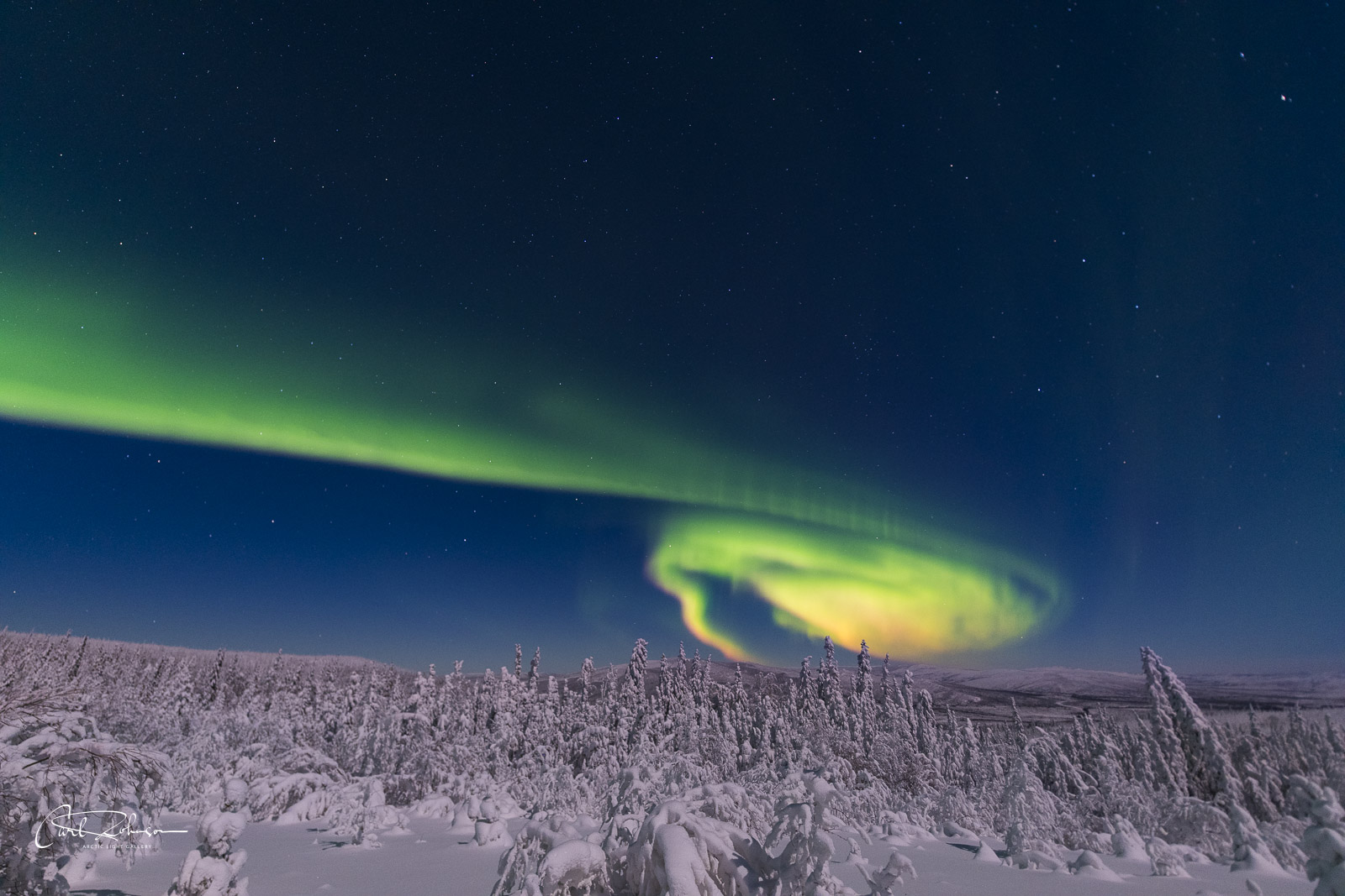 The aurora borealis grows like the cyclone of a tornado over an area with frosty trees.