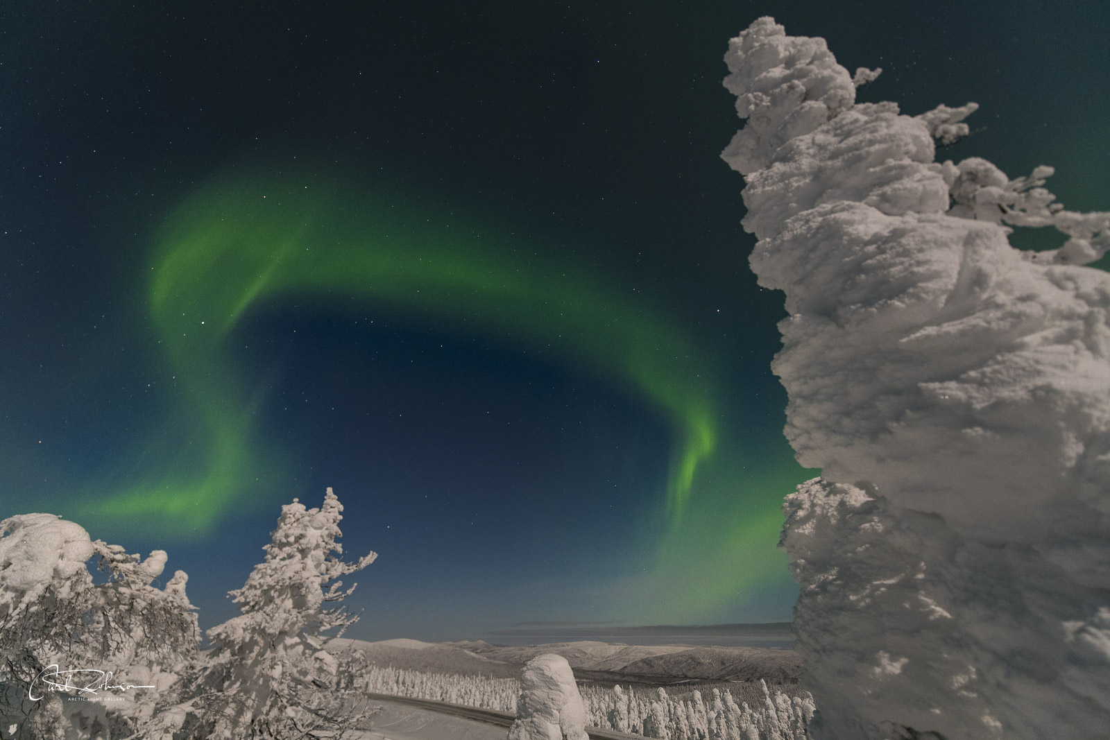 A curling swirl of aurora fills the sky over some snowy trees.
