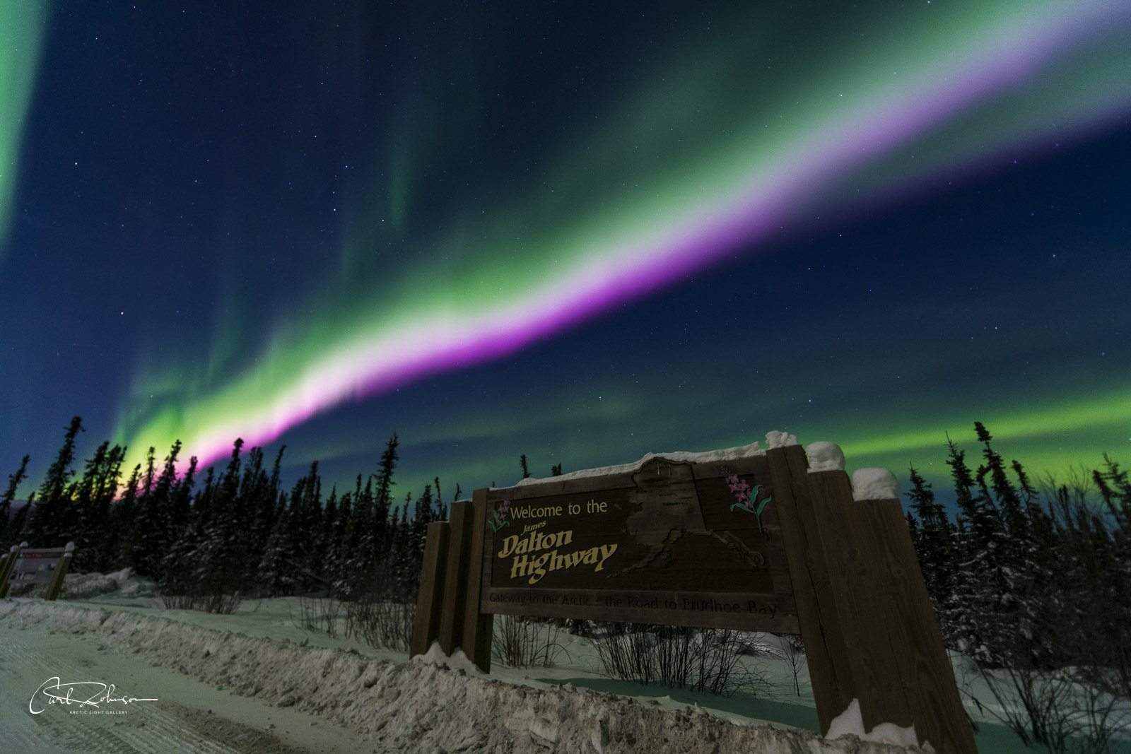 An active aurora borealis display with a strong pink line dances over the Dalton Highway sign.