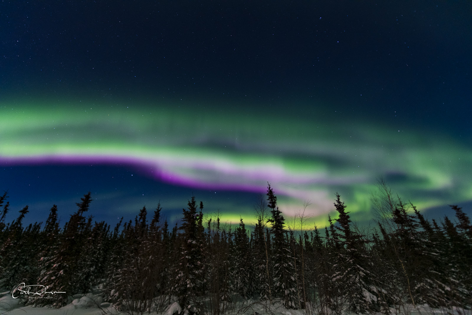 The aurora borealis reaches an active, dancing stage where light and dark pink hues move along the bottom of the display.