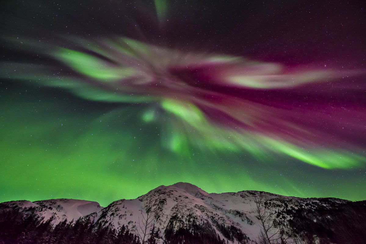 Alaska, Chugach National Forest, aurora borealis, landscape, night sky, nighttime, northern lights, winter, photo