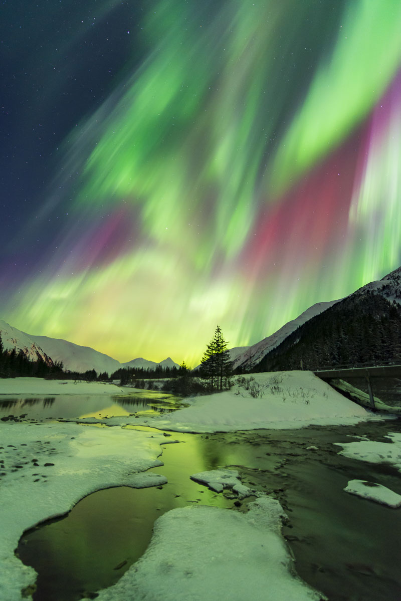 Alaska, Chugach National Forest, aurora borealis, landscape, night sky, nighttime, northern lights, winter, photo