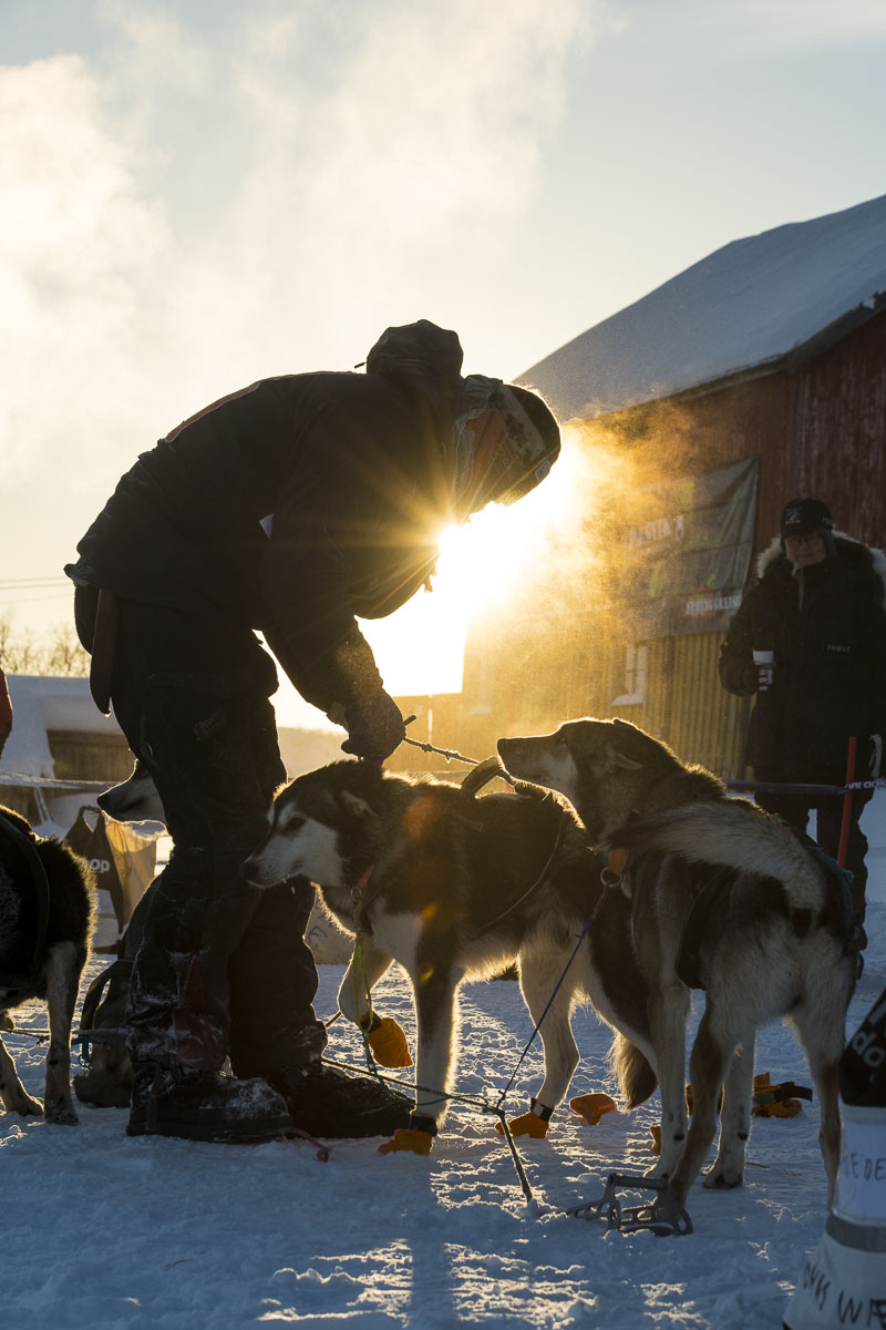 Finnmark, Finnmarksløpet, Norway, dog mushing, race, winter, photo