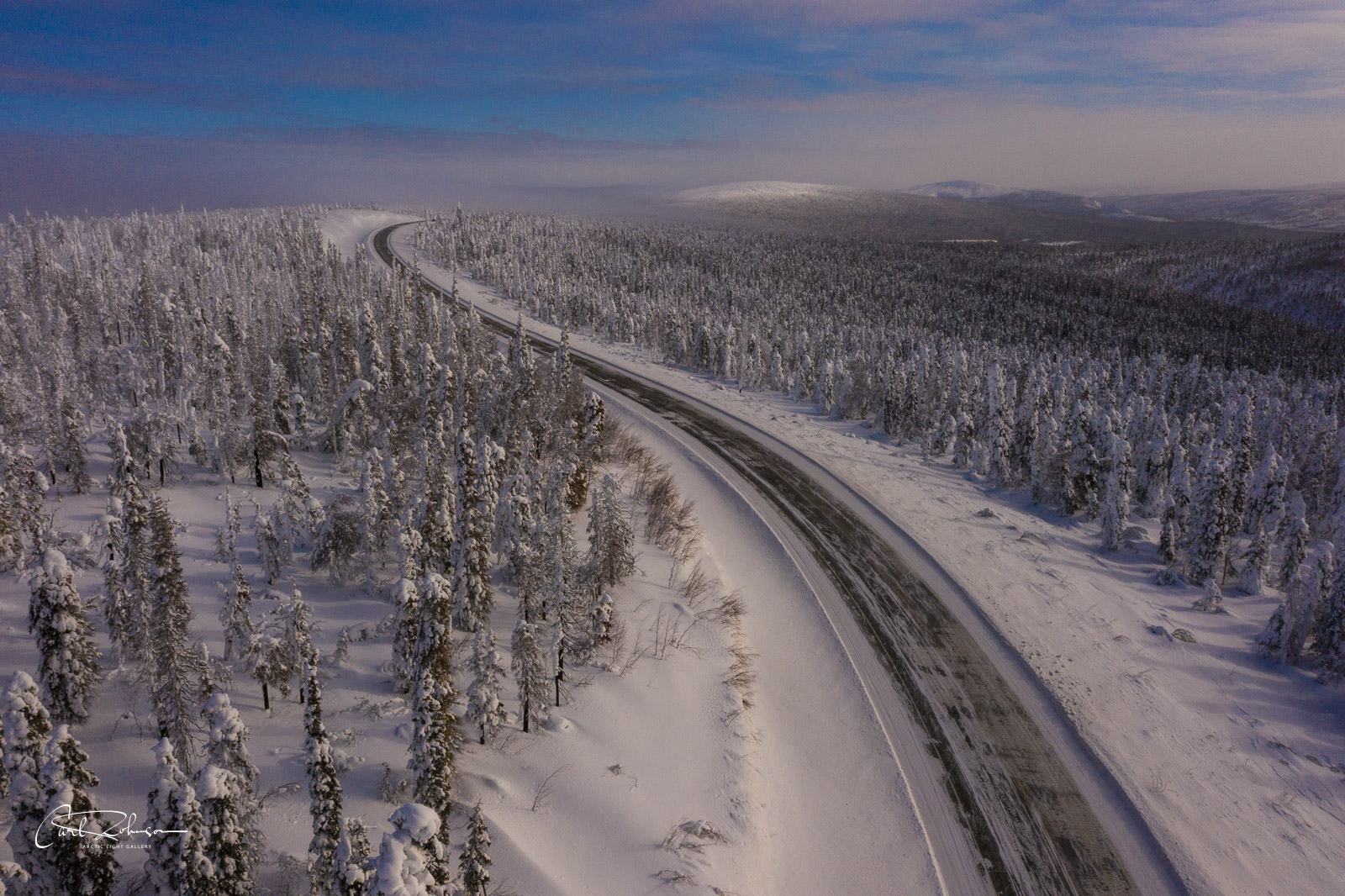 The Dalton Highway winds its way through a grove of snowy trees near the Yukon River.