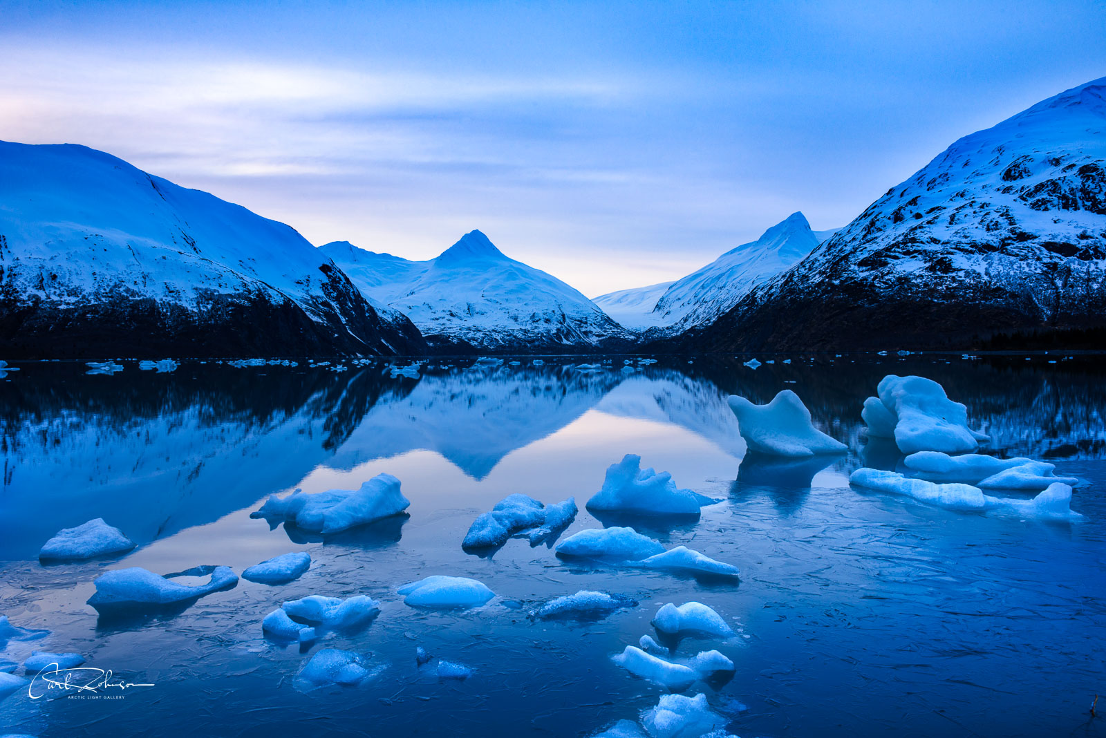 Icebergs near the shoreline in Portage Lake, Chugach National Forest.