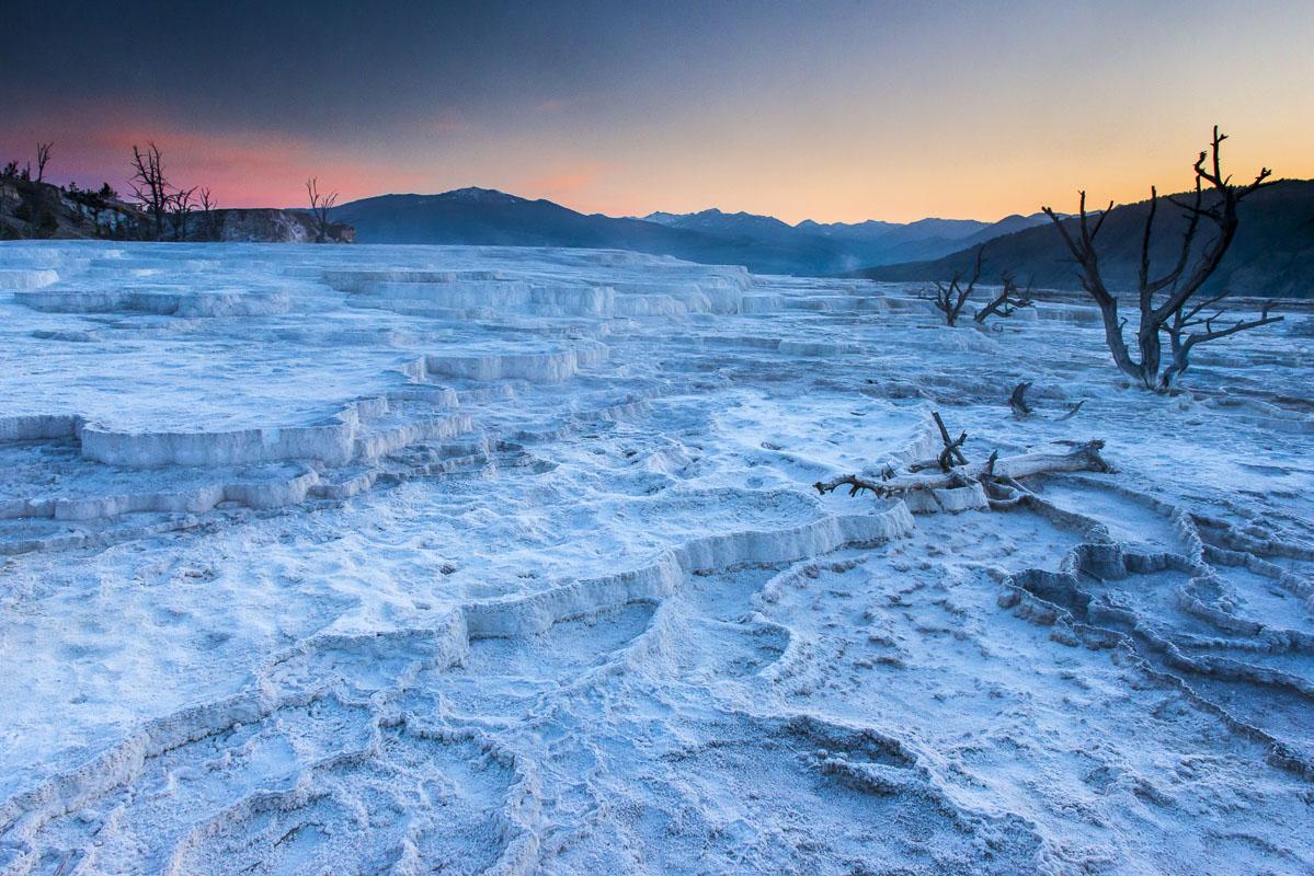 Montana, Yellowstone National Park, landscape, summer, wildlife, photo