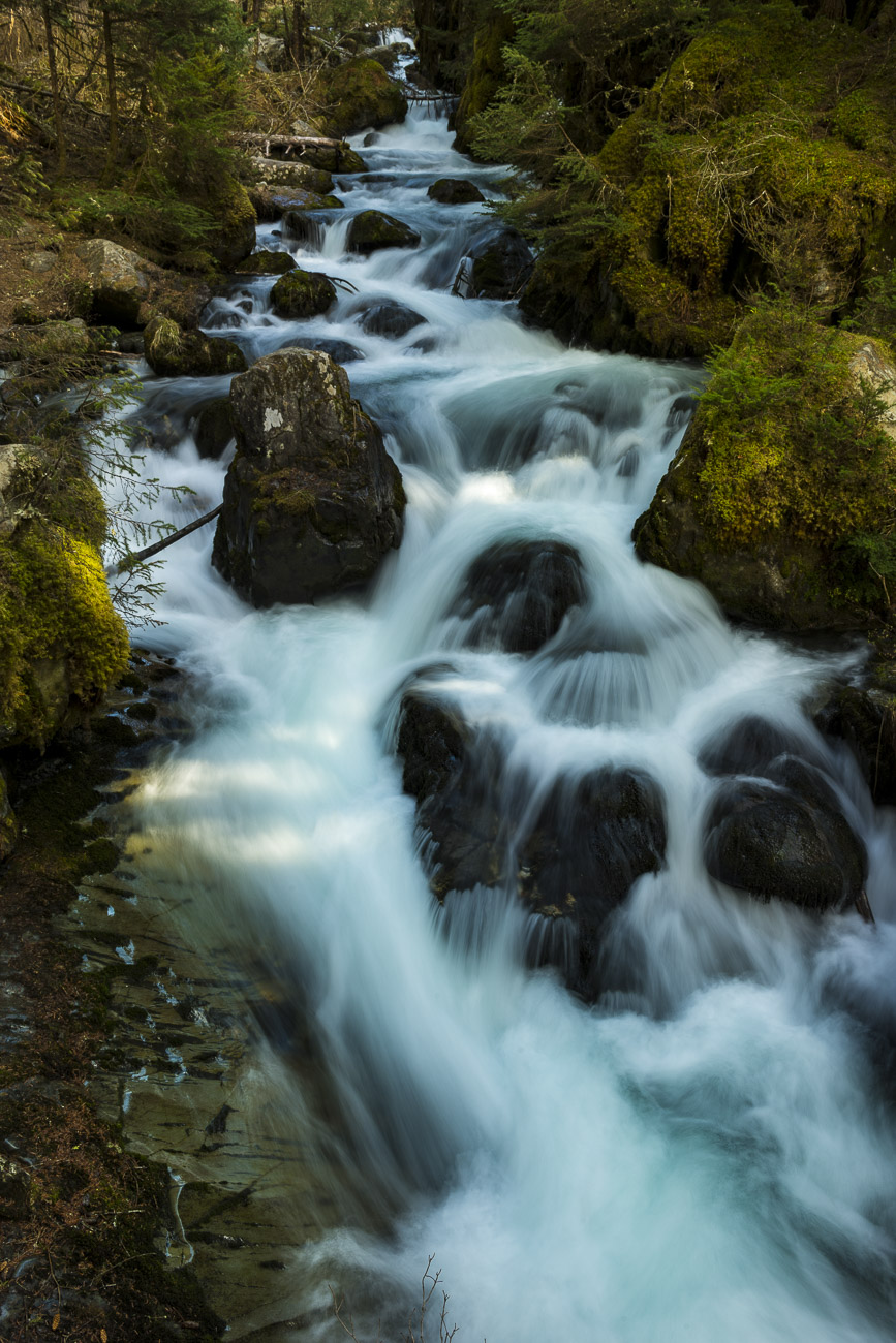 The twin spills of Virgin Creek falls is where most people spend their time when exploring Virgin Creek in this patch of temperate...