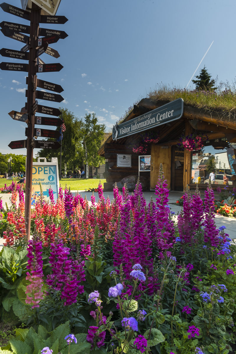 Annual flowers decorate the bed at the base of the signpost out front of the Anchorage Downtown Visitor Information Center cabin...