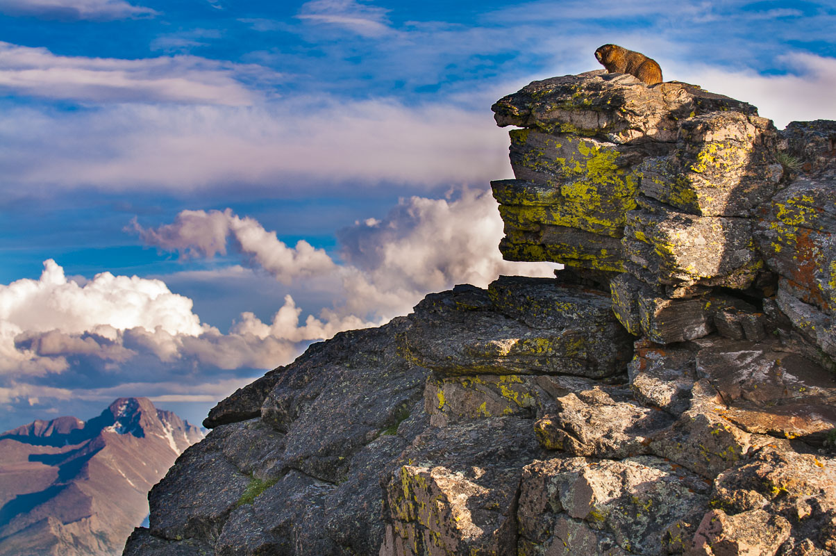 Colorado, Rocky Mountain National Park, artist-in-residence, landscapes, national park, summer, photo