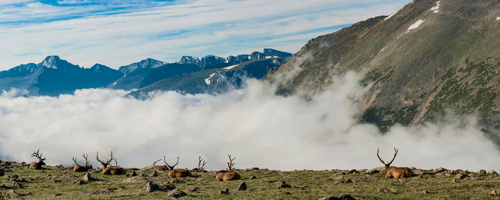 Colorado, Rocky Mountain National Park, artist-in-residence, landscapes, national park, panorama, photo