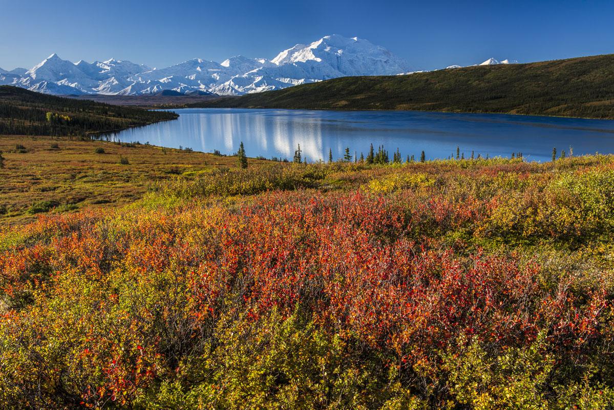 Alaska, Autumn, Denali National Park, photo