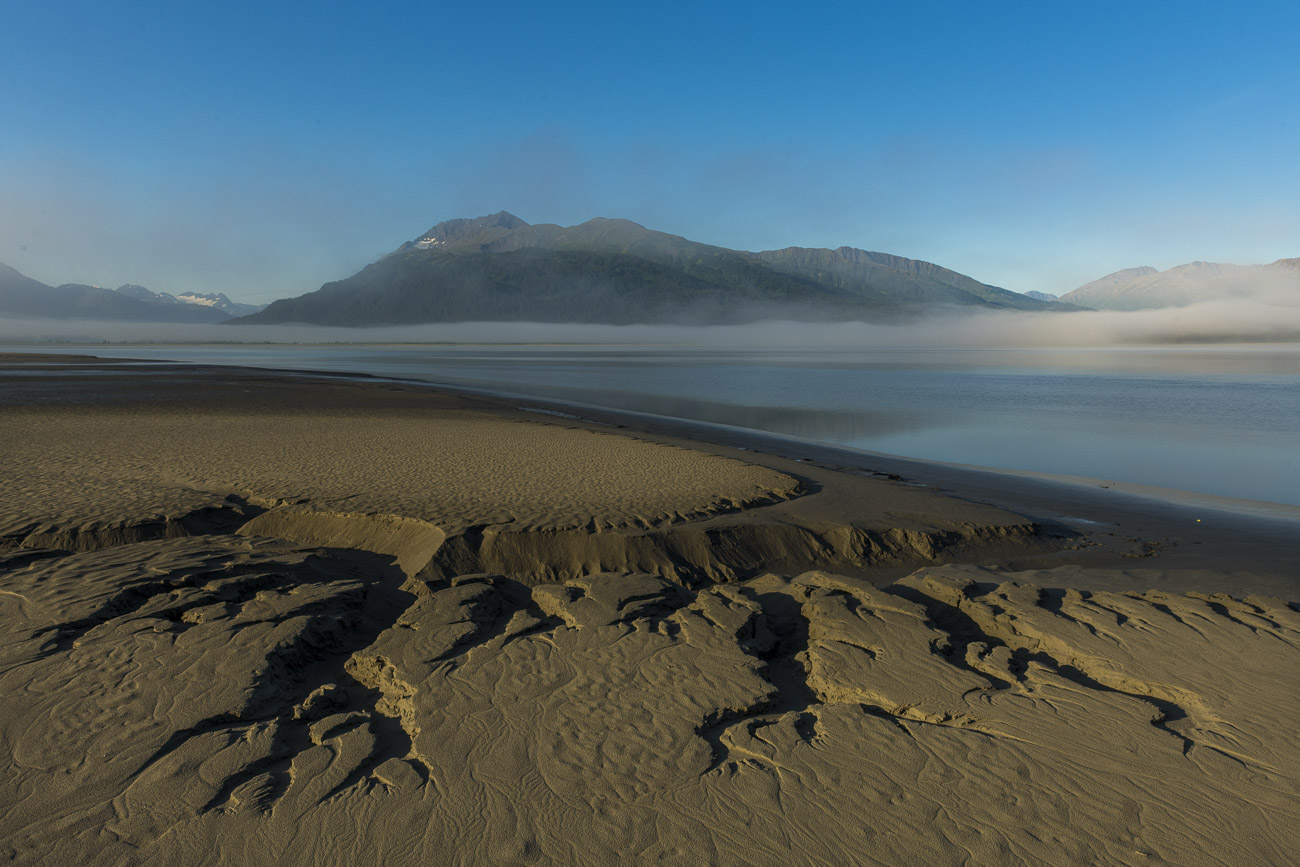 As fog shrouds the surface of the Turnagain Arm, the intricate patterns in the mudflats along the shore are exposed to provide...