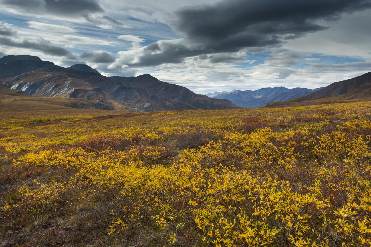 Alaska, Arctic, Autumn, Brooks Range, mountains, photo