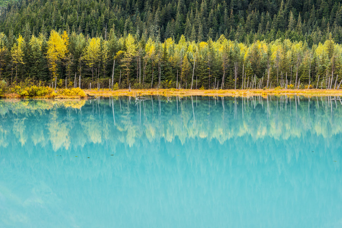 There is a lake in Portage Valley that collects silt from the nearby glacier that feeds it. Throughout the year, it is a favorite...