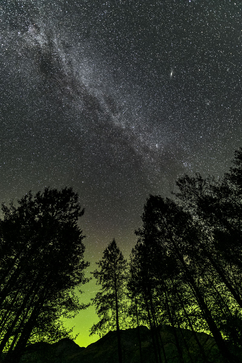 Chugach National Forest, Milky Way, Portage Valley, aurora borealis, galaxy, northern lights, trees, woods, photo