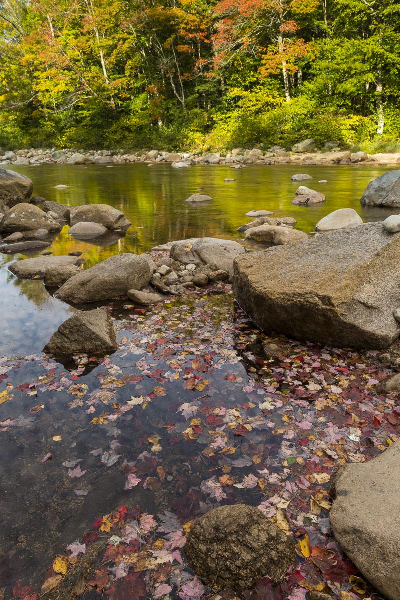 Autumn, New Hampshire, fall colors, leaves, stream, photo