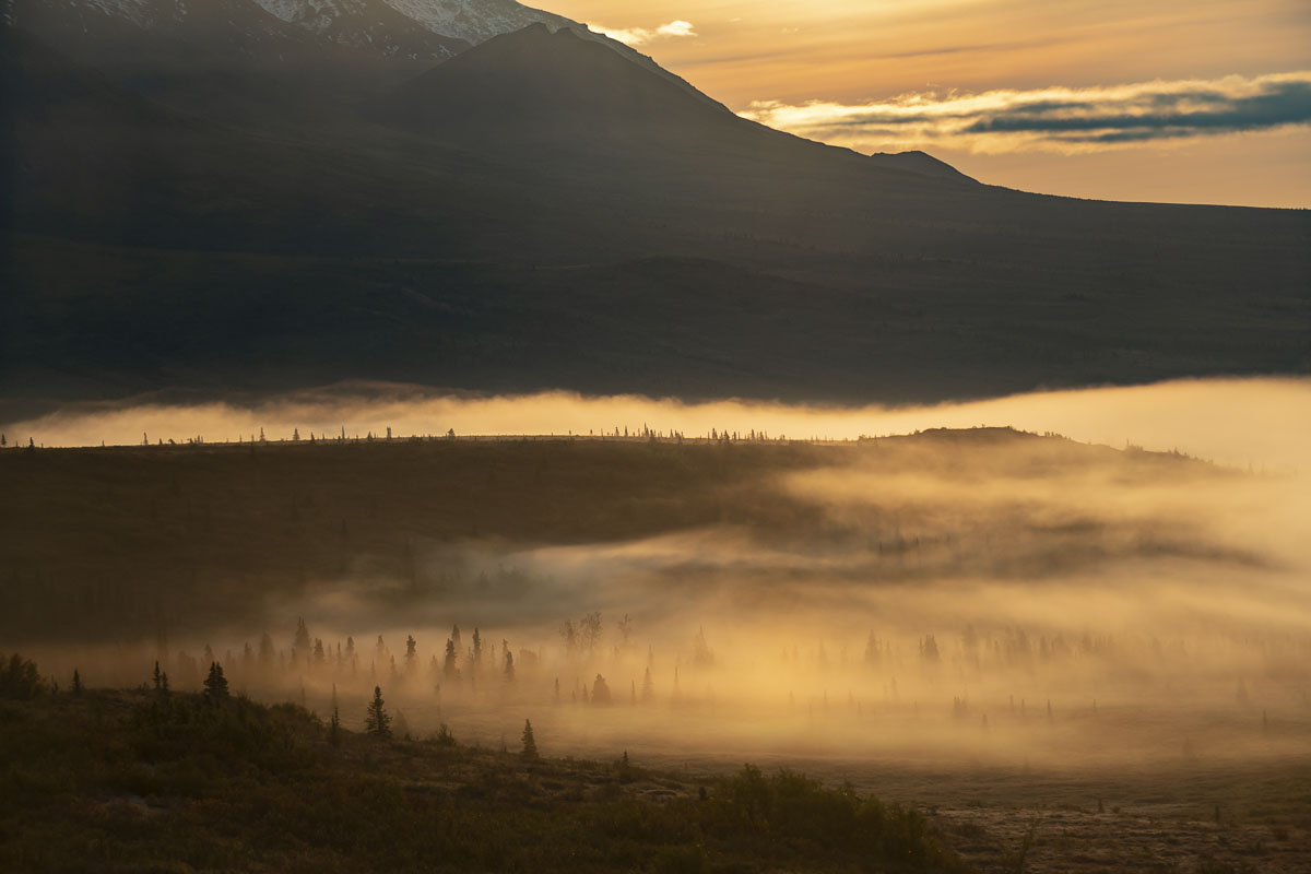 Autumn, Denali National Park & Preserve, fog, landscape, morning, sunrise, photo