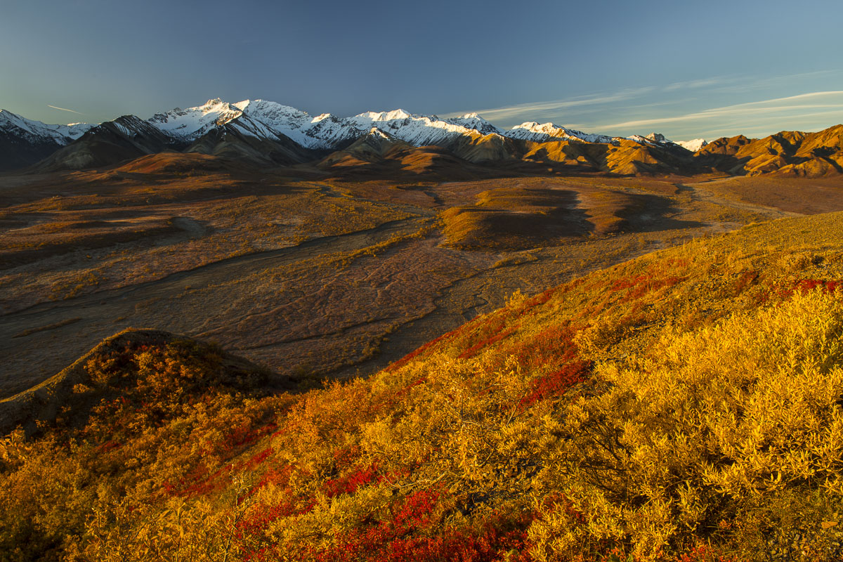 Autumn, Denali National Park, Polychrome Pass, fall colors, landscape, morning, photo