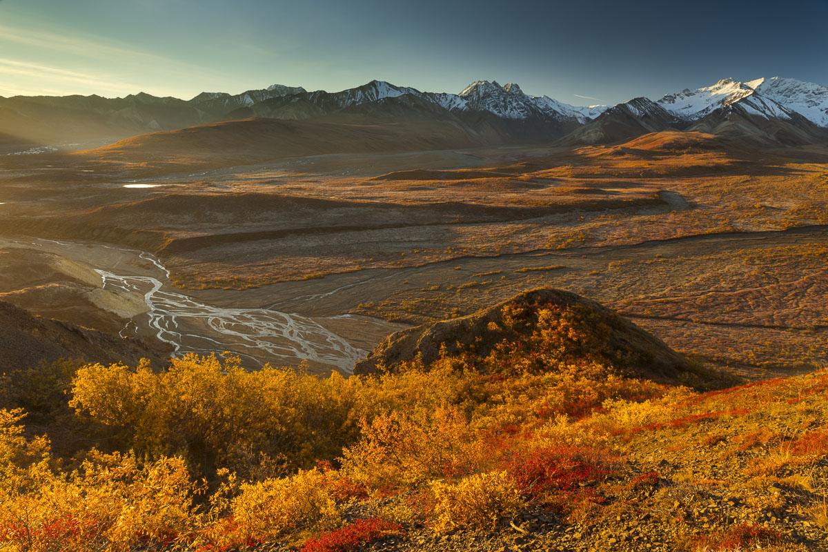 Autumn, Denali National Park, Polychrome Pass, fall colors, landscape, morning, photo